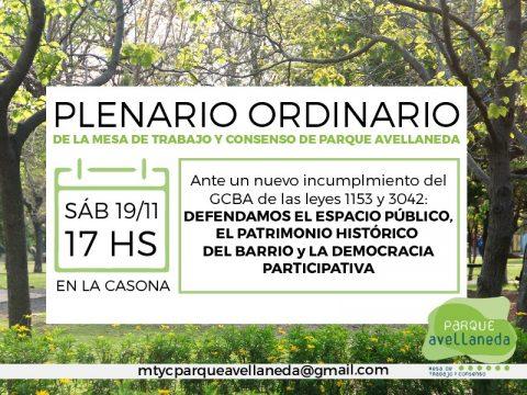 Plenario Ordinario de la Mesa de Trabajo y Consenso de Parque Avellaneda