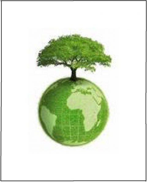 3a Movilización mundial por el Cambio Climático