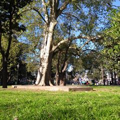 Historia inexplorada del Barrio del Parque Leonardo Pereyra