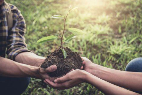 España entre los países más sostenibles del mundo